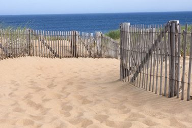 Exploring the Best Beaches in New England