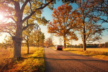 The Best Fall Foliage Drives for Your Ride