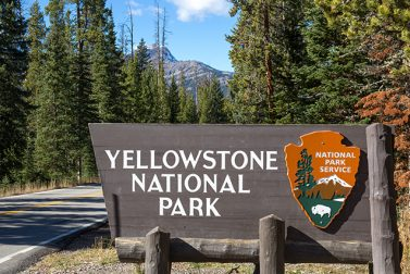 America's First National Park: Yellowstone National Park Guide
