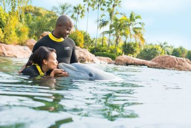 Experience Amazing Animal Encounters at SeaWorld's Discovery Cove