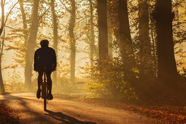Find Bike Trails and Paths Near You