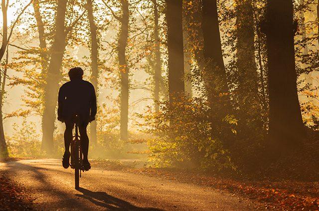 Find Bike Trails Near You