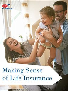 life insurance guide text ad