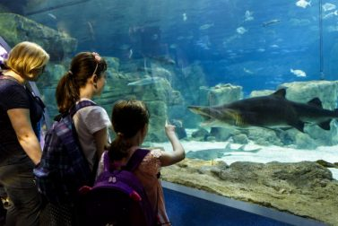 Day Trips for Kids in the Northeast