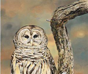 Nature's Splendor: New Jersey Highlands Juried Art & Photography Exhibit