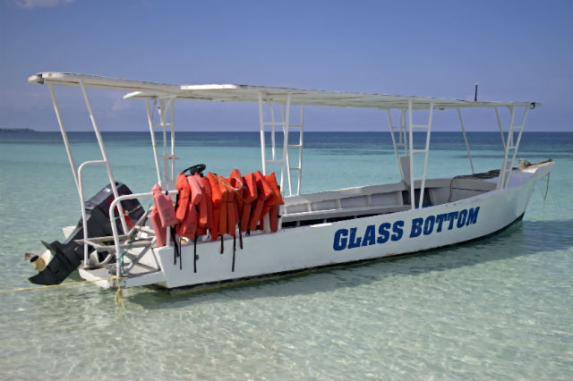 bimini water excursions