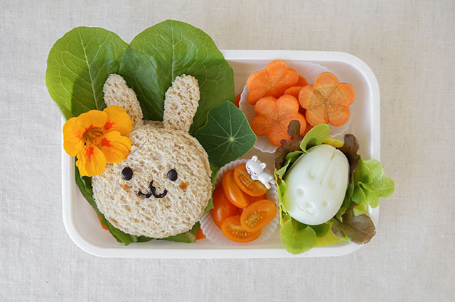 Bento Box Lunch Ideas for School