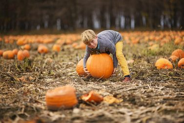 Fun Fall Activities in New England and New York