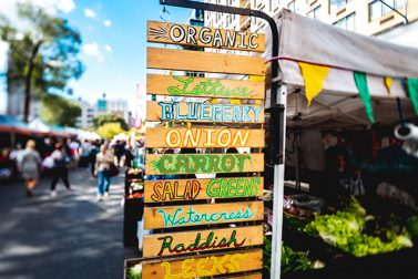 Must-Visit Northeast Farmers Markets