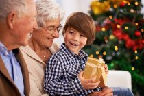 grandparent gift guide