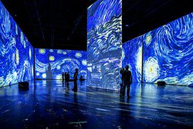 Larger-Than-Life Van Gogh Exhibits Visiting Boston, New York